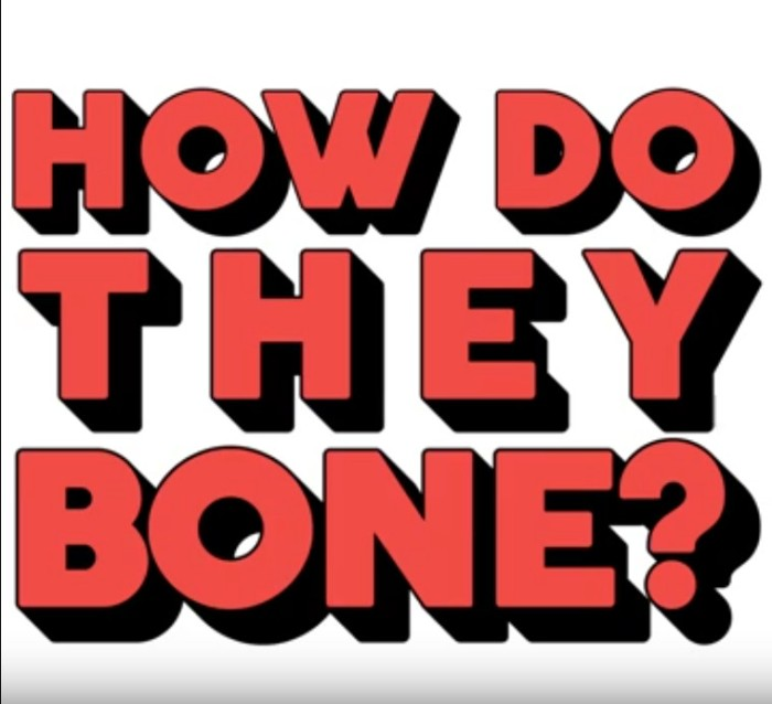 how_do_they_bone_movie_poster